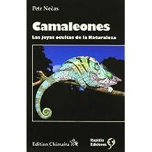 Camaleones - las joyas ocultas de la naturaleza