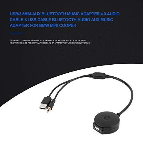 Cooper S D DOLITY c/âble dentr/ée audio AUX 3.5mm Pour 2000-2006 Mini Cooper: Cooper R50 R53 et Jc Works