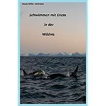 Schwimmen mit Orcas in der Wildnis: Schwimmen mit Walen