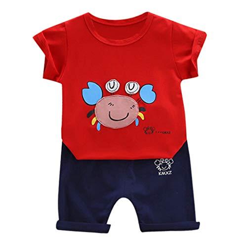 1-3 Jahre Altes Babykleidungsset,Jungen Kurzarm Kleidung Festgelegt Cartoon Krabbe Muster Tops Freizeit Kurze Hose 2PC Kinder Sommerkleidungssatz(Rot,12-18 Monate/90)