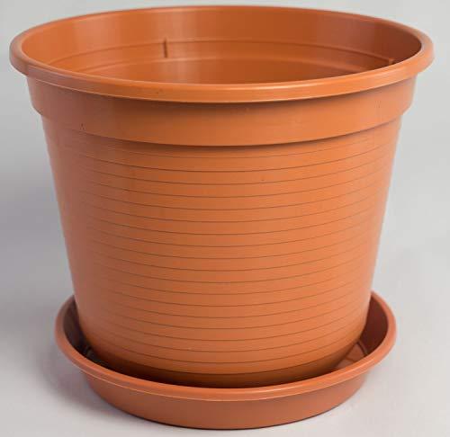 Blumentopf Standard mit Untersetzer in versch. Größen und Farben, Farbe:Terracotta, Durchmesser:8 cm