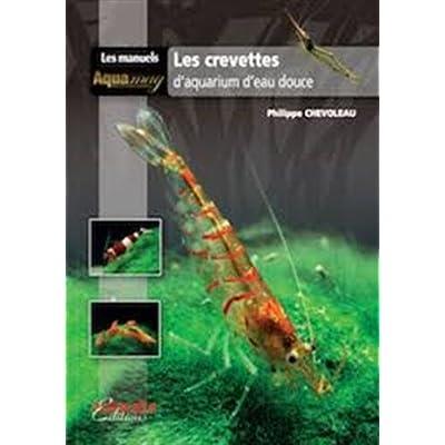 Les crevettes d'aquarium d'eau douce