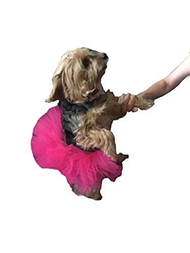 WangsCanis Haustier Hund Gaze Rock Tutu Halloween Party Kostüm Kleid Outfit Katze Prinzessin Kleiner Kleidung (Rose Rot)