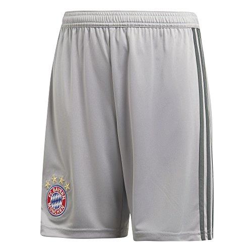 adidas Kinder 18/19 FC Bayern Goalkeeper Short Torwart, Light Granite/Utility ivy, 164