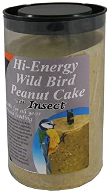 Dawn Chorus Insect Peanut Cake For Wild Birds (12 pack) by Twootz