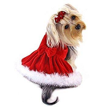 Klippo Hund/Welpen Weihnachten/Urlaub/Sundress/Party/Valentinstag/Festive/Fancy/Formale Velours mit Boa Radzierblenden Kleid für Kleine Rassen, m, Rot - Kleid Valentinstag-formale