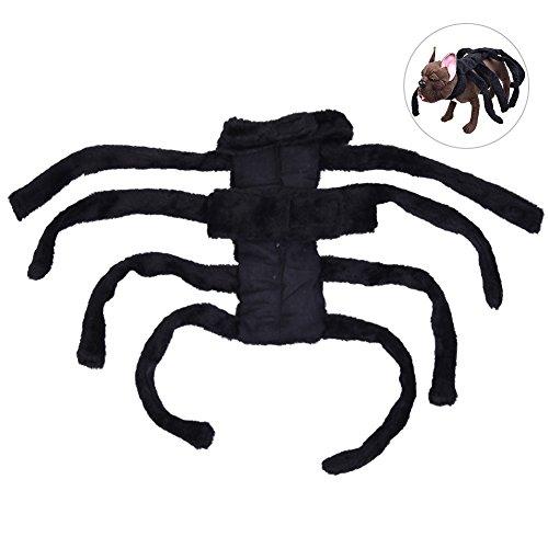 g, PET Halloween-Kostüm Charming Hund Bekleidung Haustier Fancy Outfit mit Cool Spider Form, geeignet für kleine Hunde, schwarz, M (Spider Halloween Kostüm Für Hund)