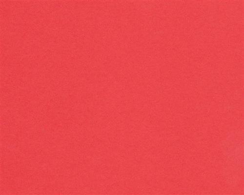 Preisvergleich Produktbild 125 Blatt DIN A4 Ziegel-Rotes farbiges 160g/m² Office-Papier. Hochwertiges farbiges Spitzenpapier für Copy Laser Inkjet . Erstklassig für Flyer Newsletter Poster Faxeingänge Wichtige Mitteilungen Warnhinweise Ordnungssysteme Memos