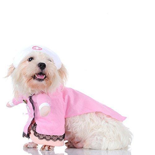 Überprüfen Krankenschwester Sie Krankenschwestern Kostüm - gomaomi Krankenschwestern-Kostüm, Krankenschwester, Halloween-Jeans, Outfit Kleidung