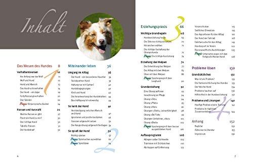 Hundeschule für jeden Tag: Erziehung die dem Hund Spaß macht - 3