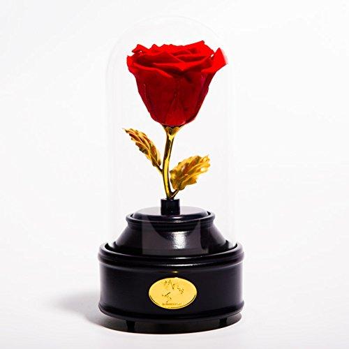 La boîte à musique,Constellation coloré rose Ornements de verre fleur immortelle Rose frais Le jour de noël Cadeau du nouvel an-B