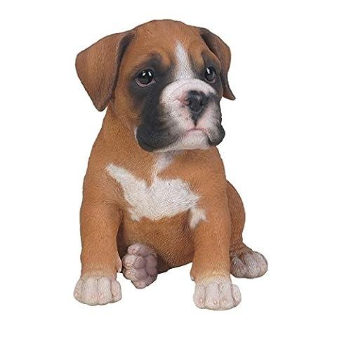 Vivid Arts Pet Pals - Boxer