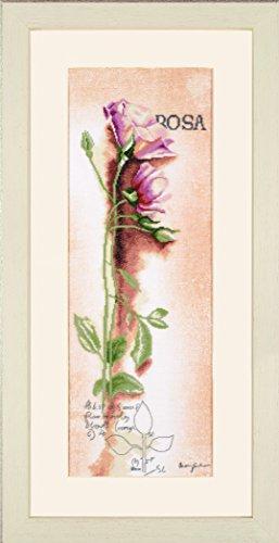 Lanarte Zählmusterpackung Rose Botanisch Kreuzstichpackung, Baumwolle, Mehrfarbig, 20 x 60 x 0.3 cm -