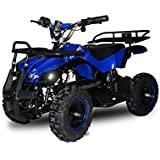 "49cc Torino 6"" Miniquad Atv Kinderquad Cross Quad Mini"