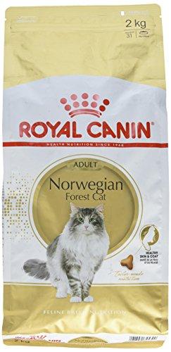 Royal Canin Katzenfutter Norwegische Waldkatze 2 kg, 1er Pack (1 x 2 kg)