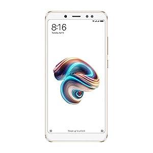 Xiaomi Redmi Note 5 Smartphone Portable débloqué 4G (Ecran: 5,99 Pouces - 32 Go - Nano-SIM - Android) Or