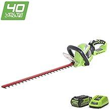 Greenworks Tools-Cortasetos inalámbrico 22637TVA 61 cm, batería de 2 Ah, cargador de