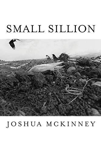 Small Sillion (Free Verse Editions) por Joshua Mckinney