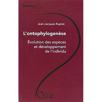 L'ontophylogenèse - Évolution des espèces et développement de l'individu.