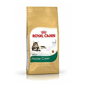 royal canin cat food maine coon 31 pet supplies. Black Bedroom Furniture Sets. Home Design Ideas