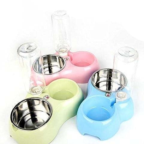 Petit saladier en acier inoxydable Dog Bowl Pet Double chien chat Nourriture plates d'eau, bouteille automatique Medium Cat Cat