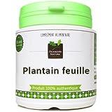 Plantain feuille1000 gélules gélatine végétale