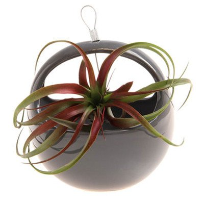 vase-a-suspendre-aerium-nest-couleur-anthracite