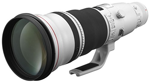 Canon EF 600mm f/4 L IS II USM Objektiv