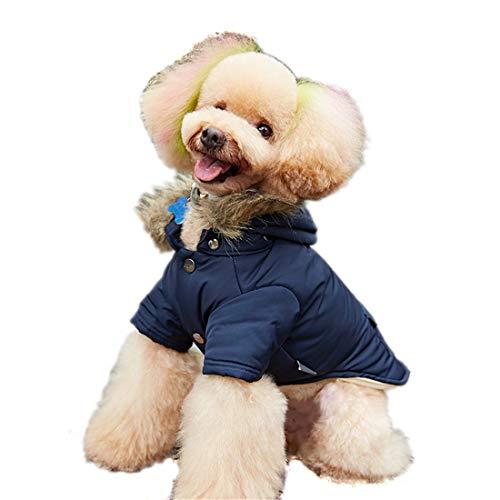 PZSSXDZW Haustierhundekostüm Daunenjacke mit Kapuze Herbst und Winter Heimtierbedarf Hundekleidung Zweibeinige Kleidung,Blau,S