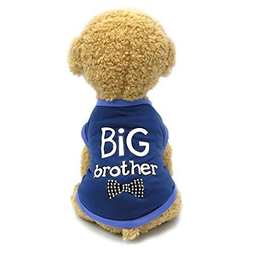 Haustier Kleidung - Sommer Hund Katze Drucken Weste - Weiches Bequemes Pullover kostüm für Kleine Hunde Katze - für Shih Tzu Welpe /Mini Dackel /Yorkie - Big Brother&Mr.Cool (Blau, XS) -