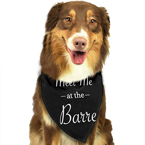 Kostüm Rote Hausgemachte - Rghkjlp Meet Me at The Barre Pet Scarf Pet Bib Triangle Scarf Accessories for Dogs Cats