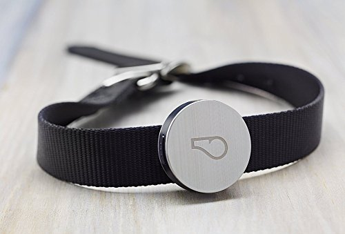 Whistle Activity Monitor For Dogs by Whistle 2