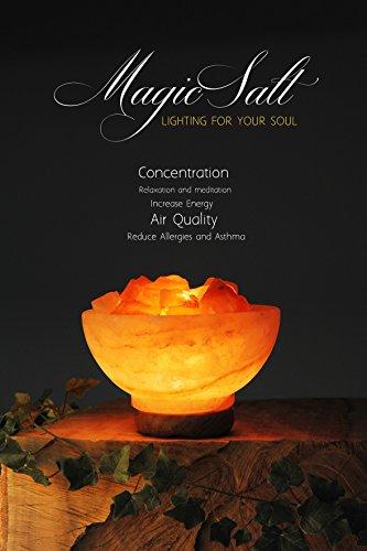 Lampada di sale dell Himalaya Magic Salt® Lighting for Your Soul – (Ciotola con Rocce di Fuoco)
