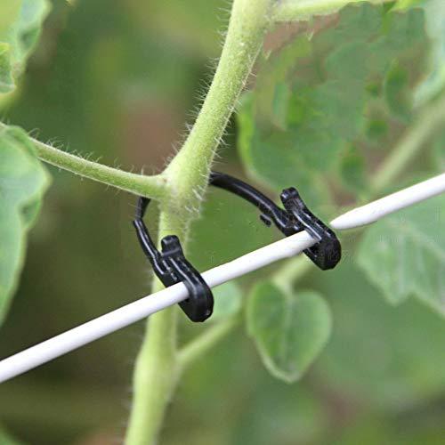 Ototon Gartenpflanze Tied Schnalle Festschnalle Zurrhaken Greffe Clips Professionelles Werkzeug für Weintrauben Gemüse 100 Stück