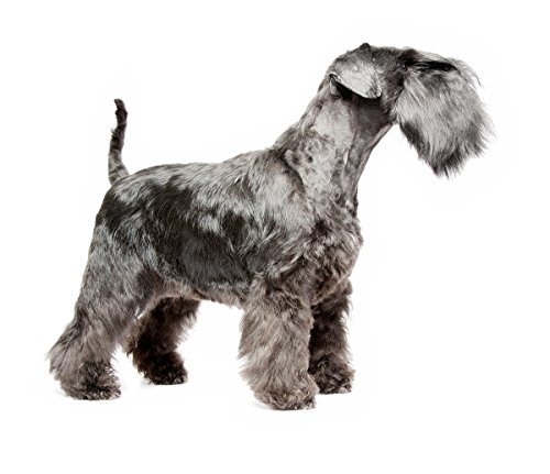 Masterclip Professional Miniature Schnauzer Dog Clippers Set Pet Grooming Clipper Trimmer Supplies 2