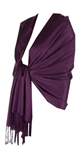 New Silky Soft Pashmina In Beatiful Colors