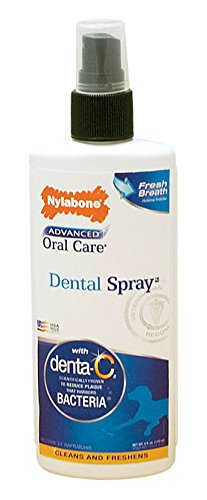 Nylabone Advanced Oral Care Dental Spray Fresh Breath Flavor 4 oz.