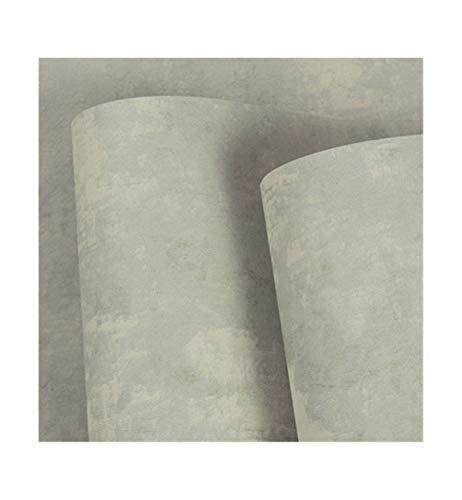 Retro cemento gris color sólido luz viento industrial