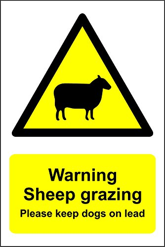 ACHTUNG Schaf Grast Bitte hält Hunde auf führen–Den großen Feste PVC Wasserdicht (Hund Führen Großen)