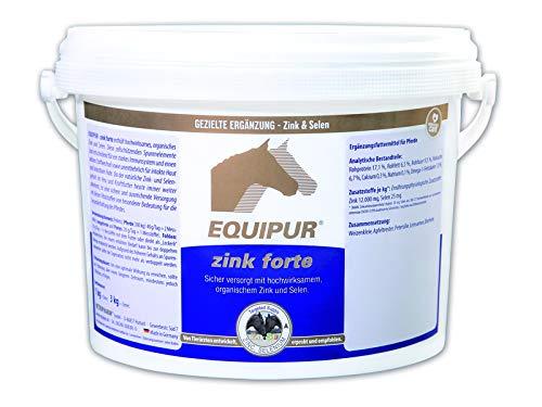 EQUIPUR – zink forte – 1000g Pallets - 2