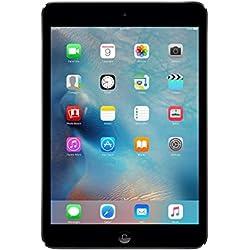 Apple iPad Mini 2 WiFi 32 Go Gris Sidéral (Reconditionné)
