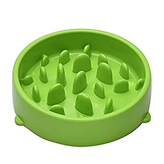 Aquarius Slow Feed Pet Bowl Improves Dog and Cat Digestion Less Bloat and Risk of Choking Interactive Maze Design Feeder Aquarius Slow Feed Pet Bowl Improves Dog and Cat Digestion Less Bloat and Risk of Choking Interactive Maze Design Feeder 415FhLqOhgL