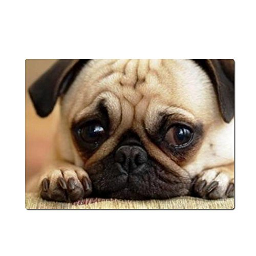 thwo-pug-dog-1-mouse-pads-984l7787w-by-generic
