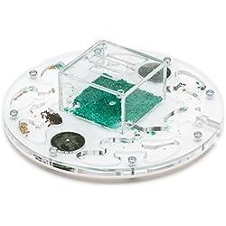 Fourmiliere Ant Farm Circle BIG (Fourmis et reine gratuites)