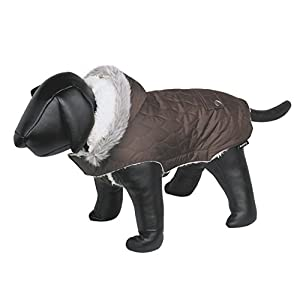 Nobby Polar Dog Coat, 32 cm Back Length, Brown