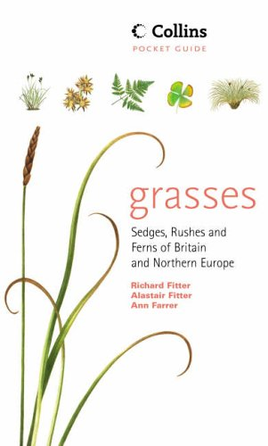 Grasses, Sedges, Rushes and Ferns of Britain and Northern Europe - Collins Pocket Guide.