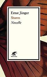 Sturm: Novelle
