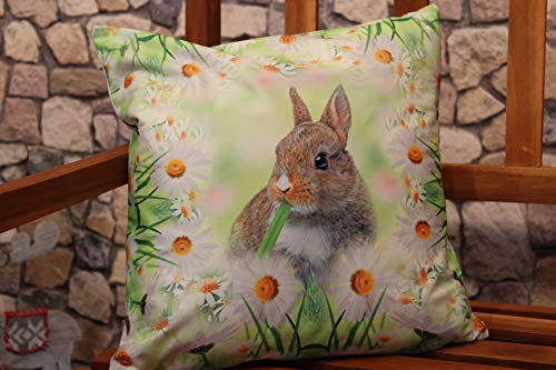 Kamaca Serie HASE IM Gras hochwertiges Druck-Motiv mit süssen Hasen Eyecatcher in Frühling Ostern (Kissenbezug 40x40 cm)