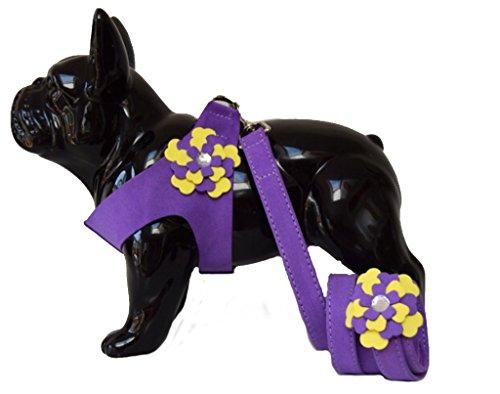 """Lushpetz Harnais Flower Dog avec Mine Assortie, Rose Noir Bleu ou Violet, pour Petites Races de Chiens Xsmall… (Convient à la Poitrine 40cm / 16"""", Violet)"""