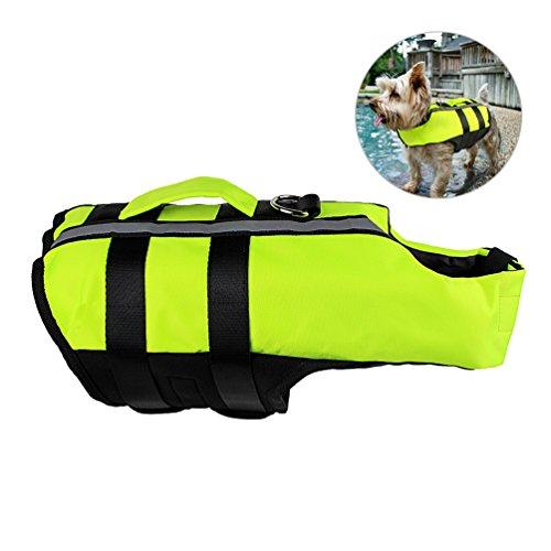 Petacc Hundeschwimmweste | Schwimmweste, Schwimmweste mit Herausnehmbarem Airbag, Einsteckschnalle und Obergriff, Faltbar, Fluoreszierendes Grün, M (L)